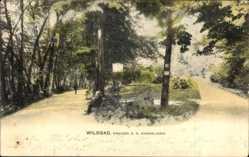 Postcard Bad Wildbad im Kreis Calw, Eingang zu den Kuranlagen