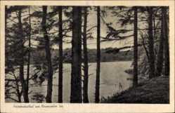 Postcard Friedrichsthal Schwerin in Mecklenburg Vorpommern, Neumühler See