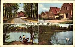 Postcard Harsefeld im Kreis Stade, Steinfeldstraße, Rosenborn, Meybohmstraße