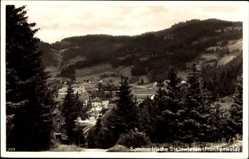 Postcard Steinwiesen Frankenwald, Blick auf den Ort zwischen Bäumen hindurch