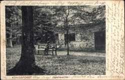 Postcard Köln am Rhein, Jägerhäuschen im Waldgebiet Königsforst