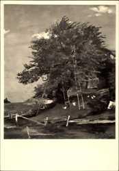 Künstler Ak Padua, Paul M., Beim Kirschenpflücken, HDK 569
