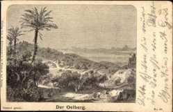 Künstler Ak Israel, Der Ölberg, Landschaft, Palmen, Panorama