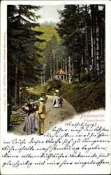 Postcard Badenweiler, Waldpartie, Spazierweg, Passanten, Fürstenfreunde