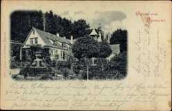Postcard Bad Pyrmont in Niedersachsen, Blick auf ein teilverdecktes Haus