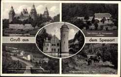 Postcard Aschaffenburg Unterfranken Bayern, Schloss, Das Kleinod, Wildschweine