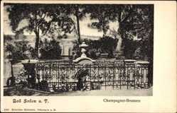 Postcard Bad Soden am Taunus Hessen, Partie am Champagner Brunnen