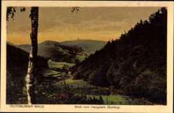 Postcard Detmold in Nordrhein Westfalen, Blick vom Hangstein, Schling, Berge