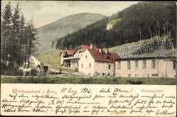 Ak Sokołowsko Görbersdorf Schlesien, Blick in den Blitzengrund