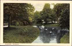 Postcard Enschede Overijssel Niederlande, Volkspark, Wasserpartie