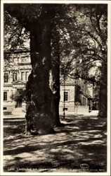 Postcard Lund Schweden, Lundgard och Universitetet, Garten, Baum, Universität