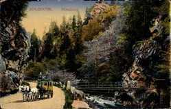 Postcard Ühlingen Birkendorf, Blick in das Schluchttal, Allmutsteg, Kutsche