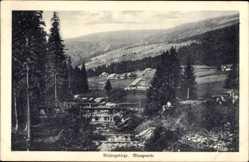 Ak Blaugrund Schlesien Riesengebirge, Teilansicht des Ortes, Bach, Brücke