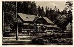 Ak Lądek Zdrój Bad Landeck Schlesien, Partie am Waldtempel