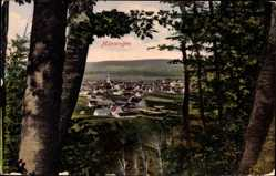 Postcard Münsingen in Baden Württemberg, Blick aus der Ferne auf die Stadt