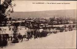Postcard Béhouard Maine et Loire, ND, L'Ile de Béhuard pendant une Inondation, Crue