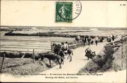 Ak Batz sur Mer Loire Atlantique, A travers les Marais Salants du Pouliguen