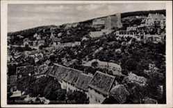Postcard Bad Frankenhausen im Kyffhäuserkreis, Der Weinberg, Hausdächer