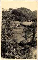 Postcard Zeulenroda Triebes Thüringen, Hammermühle mit Teufelsberg im Weidatal