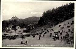 Postcard Wernigerode am Harz, Am große Bleeck, Nöschenrode, Schloss, Kühe