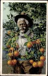 Ak USA, Products of Sun Kissed Southland, Oranges