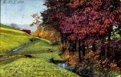 Ak Herbstlandschaft Bei Neustadt, Nenke und Ostermaier 186 3207