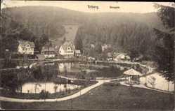 Postcard Triberg im Schwarzwald, Blick über den Bergsee, Villen