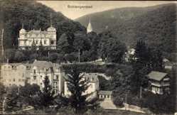 Postcard Schlangenbad im Rheingau Taunus Kreis, Teilansicht vom Ort