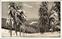 Postcard Großbreitenbach im Ilm Kreis Thüringen, Hirtenwiesen im Winter