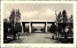 Postcard Ludwigshafen am Rhein Rheinland Pfalz, Partie im Hindenburgpark