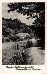 Postcard Boltenmühle am Tornowsee Neuruppin in Brandenburg, Ruppiner Wald, Haus