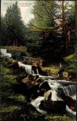 Postcard Bad Suderode im Harz, Wilde Flut am Silberteich, Fluss, Wald