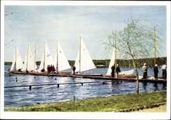 Ak Arendsee Altmark, Seepartie mit Segelbooten, Landungssteg