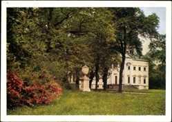 Postcard Oranienbaum Wörlitz im Kreis Wittenberg, Schloss Erdmannsdorf, Park