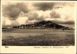Ak Reinhardtshof Schöna, Elbegebirge, Blick auf Ort und Wolfsberg, Hahn 2495