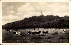 Postcard Elten Emmerich an Niederrhein, Blick auf Hochelten, Kühe auf der Weide
