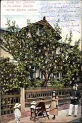 Ak Gruß aus Sachsen wo die schönen Mädchen auf Bäumen wachsen
