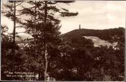 Postcard Bad Freienwalde an der Oder, Blick zum Kriegerdenkmal, Waldpartie