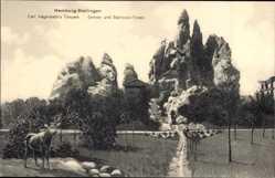 Postcard Hamburg Eimsbüttel Stellingen, Carl Hagenbecks Tierpark, Steinbockfelsen