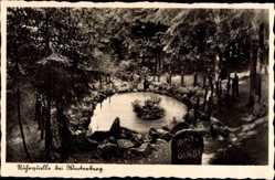 Postcard Winterberg im Hochsauerlandkreis, Partie an der Ruhrquelle