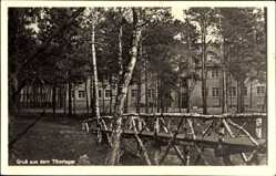 Postcard Świebodzin Schwiebus Ostbrandenburg, Gruß aus dem Tiborlager