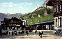 Postcard Zermatt Kt. Wallis, Départ des Chevres, Ziegentrieb durch den Ort