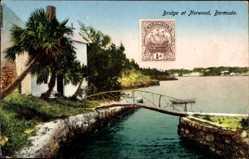 Postcard Norwood Bermuda, Bridge, Holzbrücke, Palmen, Wasser