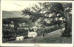 Ak Borsec Bad Borseck Rumänien, Fotograph, Talblick, Villen