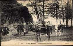 Ak Au Pays Normand, Vachère venant de traire, Frau auf einem Esel