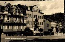 Postcard Bad Elster im Vogtland, Kurheime am Rosengarten, Edelweiss