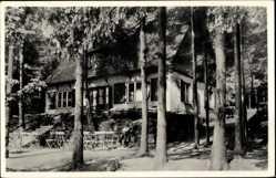Postcard Bad Elster im Vogtland, Partie am Waldcafé Bärenloh