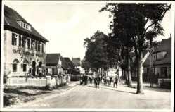 Postcard Schierke Wernigerode, Straßenpartie, Rinderherde, Cafe Winkler