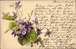 Künstler Ak Lila Veilchenblüten, Meissner und Buch 1026
