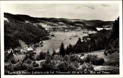 Postcard Titisee Neustadt im Breisgau Hochschwarzwald, Löffelschmiede, Felder